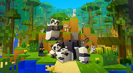 Minecraft Starter Collection Review